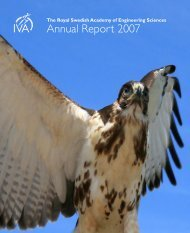 Annual Report 2007 - IVA