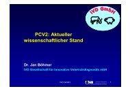Vortrag PCV-2 - IVD GmbH