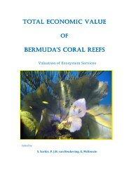 Final report - VU University, Institute for Environmental Studies ...