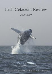 downloaded here - Irish Whale and Dolphin Group