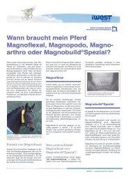 arthro oder Magnobuild®Spezial? - iWEST