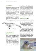 Mein Leben als Seehund - Iwss.org - Seite 4