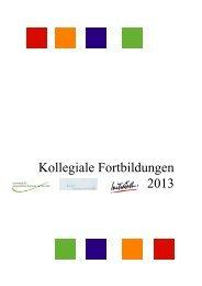 Kollegiale Fortbildungen 2013 - Initiative zur sozialen Rehabilitation ...