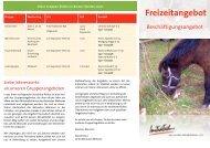 Flyer - Initiative zur sozialen Rehabilitation eV