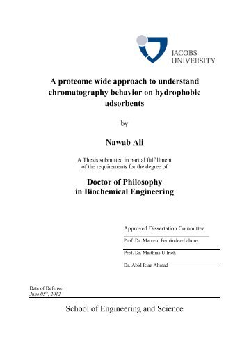 Thesis final - after defense-7 - Jacobs University