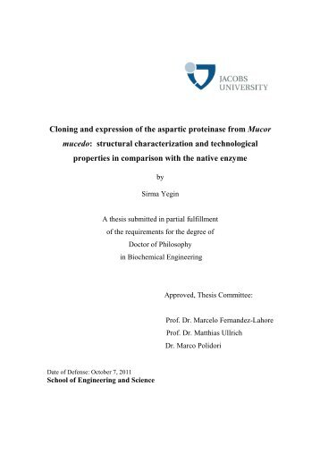 THESIS SIRMA after defense 9 october 2011 - Jacobs University