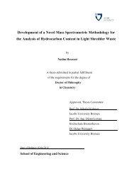 Development of a Novel Mass Spectrometric ... - Jacobs University