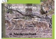 Leben mit Wölfen in Niedersachsen - Jägerschaft des Landkreises ...