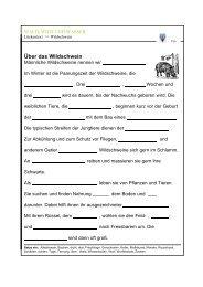 Über das Wildschwein