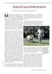 Waidgerechte Jagd und Wildlife-Management - Deutsches Jagd ...