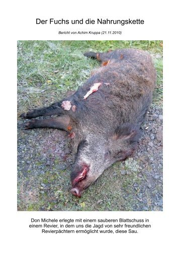 Der Fuchs und die Nahrungskette - Jagd und Sportschuetzen Marl eV