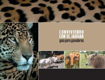 Conviviendo con el jaguar - Panthera / Costa Rica