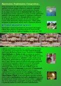 Ritiro Mundo Maya 2012 - Page 6