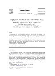 Biophysical constraints on neuronal branching