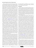 Neisserial Omp85 Protein Is Selectively Recognized and Assembled ... - Page 7