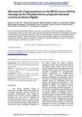 Site-specific O-glycosylation on the MUC2 mucin inhibits cleavage ... - Page 2