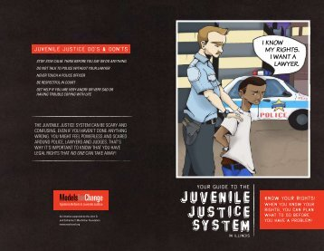 Your Guide to the Juvenile Justice System in Illinois - National ...
