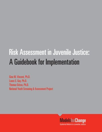 Risk Assessment in Juvenile Justice: A Guidebook ... - JDAI Helpdesk