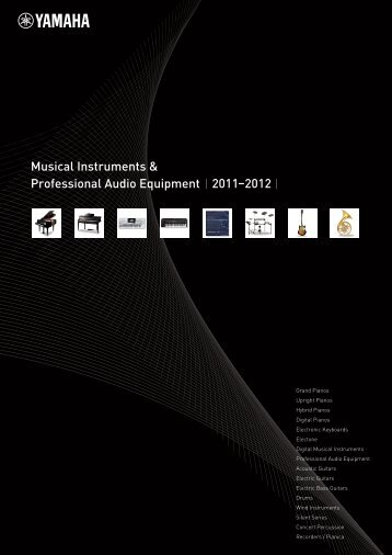 Musical Instruments & Professional Audio Equipment 2011 ... - Jedistar