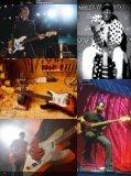 2010 price list - Fender - Page 6