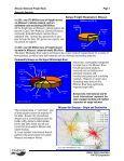 MO Freight Executive Summary - Page 5