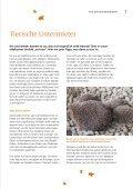 Mieterzeitung · Ausgabe 71 · Herbst 2013 Wohlfühlen ... - jenawohnen - Page 7