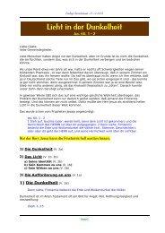 Licht in der Dunkelheit Predigt vom 25.12.2008 - Jesus-Service