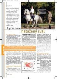 Nemoci koní: Když se řekne natažený sval - Jezdectví
