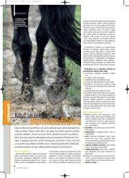 Když se řekne dermatofilóza - Jezdectví