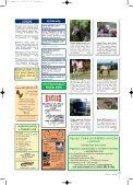 řádková inzerce - Jezdectví - Page 2