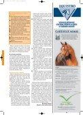 Když se řekne laminitida - Jezdectví - Page 4