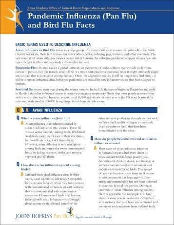 Pandemic Influenza (Pan Flu) and Bird Flu Facts - Johns Hopkins ...