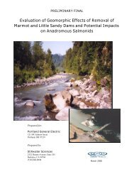 Stillwater Sciences 2000 report on geomorphic effects