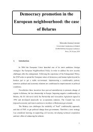 Democracy promotion in the European neighbourhood: the case of ...