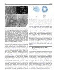 The Plant Nucleolus - John Innes Centre - Page 2