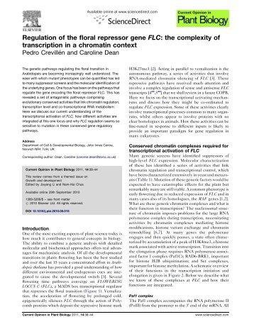 Regulation of the floral repressor gene FLC - John Innes Centre