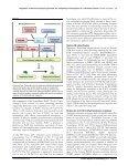 Regulation of the floral repressor gene FLC - John Innes Centre - Page 2