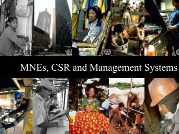 MNEs, CSR and Management Systems