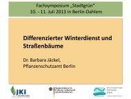 Differenzierter Winterdienst und Straßenbäume