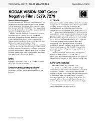 KODAK VISION 500T Color Negative Film / 5279, 7279