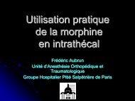 Utilisation pratique de la morphine en intrathécal - JLAR