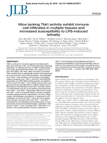 Mice lacking Tbk1 activity exhibit immune cell infiltrates in multiple ...