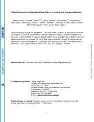 Genistein, EGCG, and capsaicin inhibit adipocyte differentiation