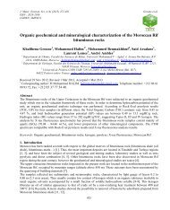 Organic geochemical and mineralogical characterization of the ...