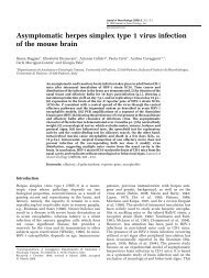 of the mouse brain Asymptomatic herpes simplex type 1 virus infection
