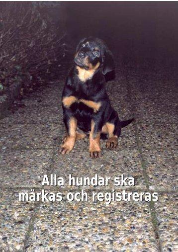 Alla hundar ska märkas och registreras Alla ... - Jordbruksverket