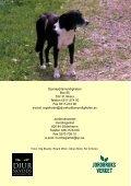 Alla hundar ska märkas och registreras Alla ... - Jordbruksverket - Page 4