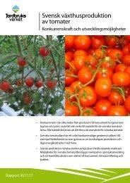 Svensk växthusproduktion av tomater - Jordbruksverket