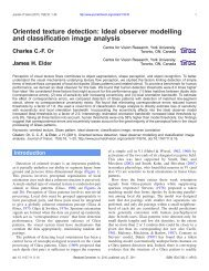 Oriented texture detection: Ideal observer ... - Journal of Vision