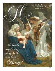 Saint Charles Borromeo - John Patrick Publishing Company